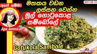 ★ මතකය වඩන,ලස්සන වෙන්න මුල් ගොටුකොළ සම්බෝලේ Healthy Gotukola Sambole by Apé Amma
