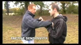Systema Concepts - Sensitivity Training
