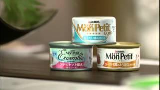 MonPetit Cat Food CF