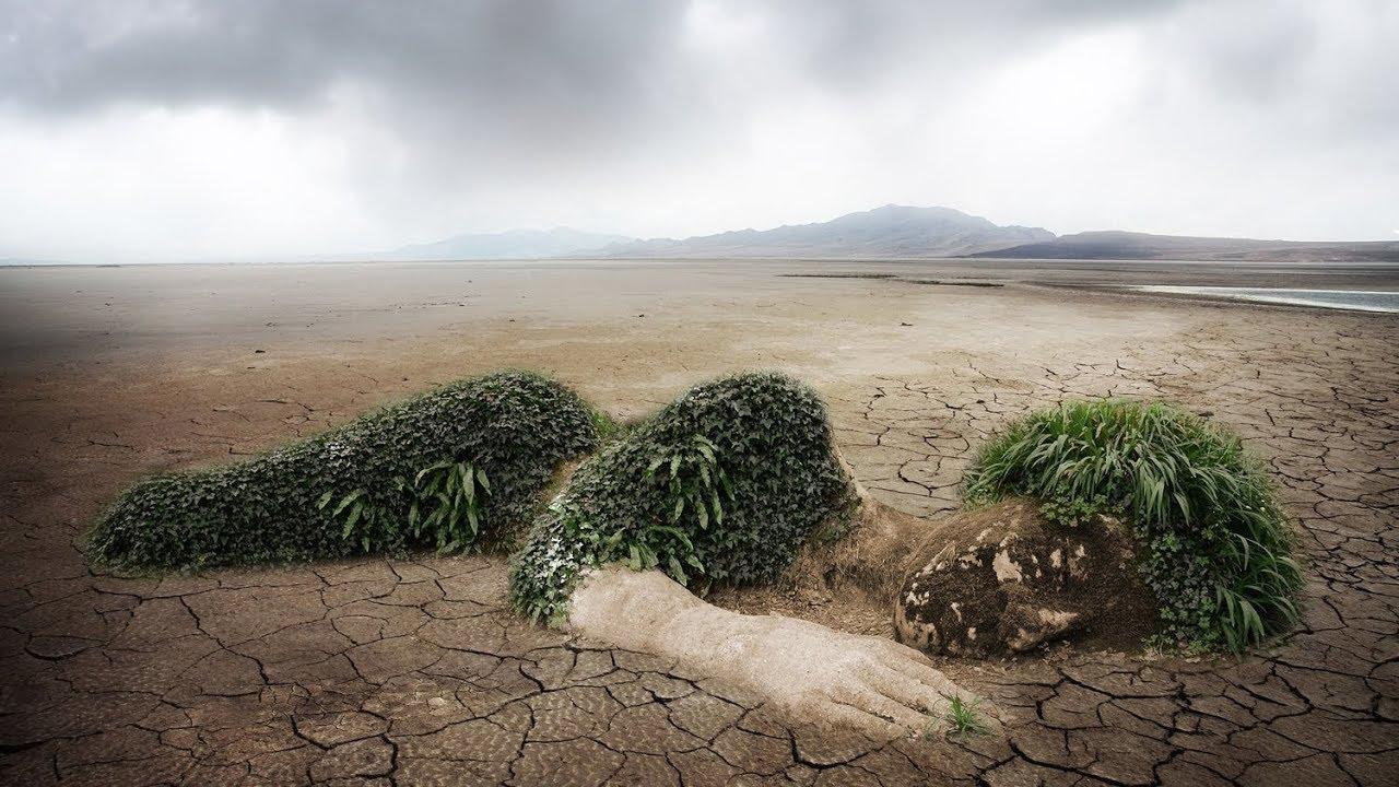 Экологический след: как мы безудержно тратим ресурсы Земли