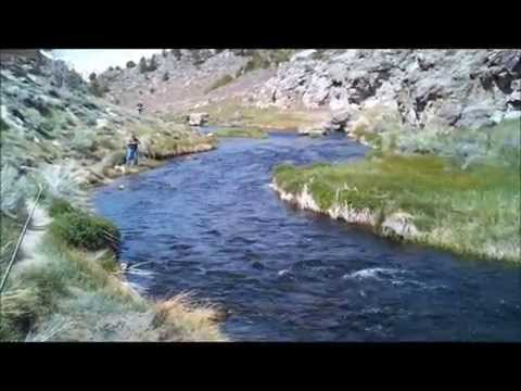 Fly Fishing Hot Creek, Ca