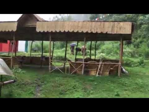 Shimla ERANVINASH Nature Camps,(INDIA)