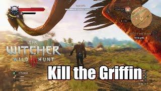 S Royal Griffin Boss Fight Gameplay | Sharikov