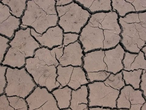 how to avoid soil degradation