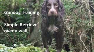 Gundog Training - Simple Retrieve Over A Wall