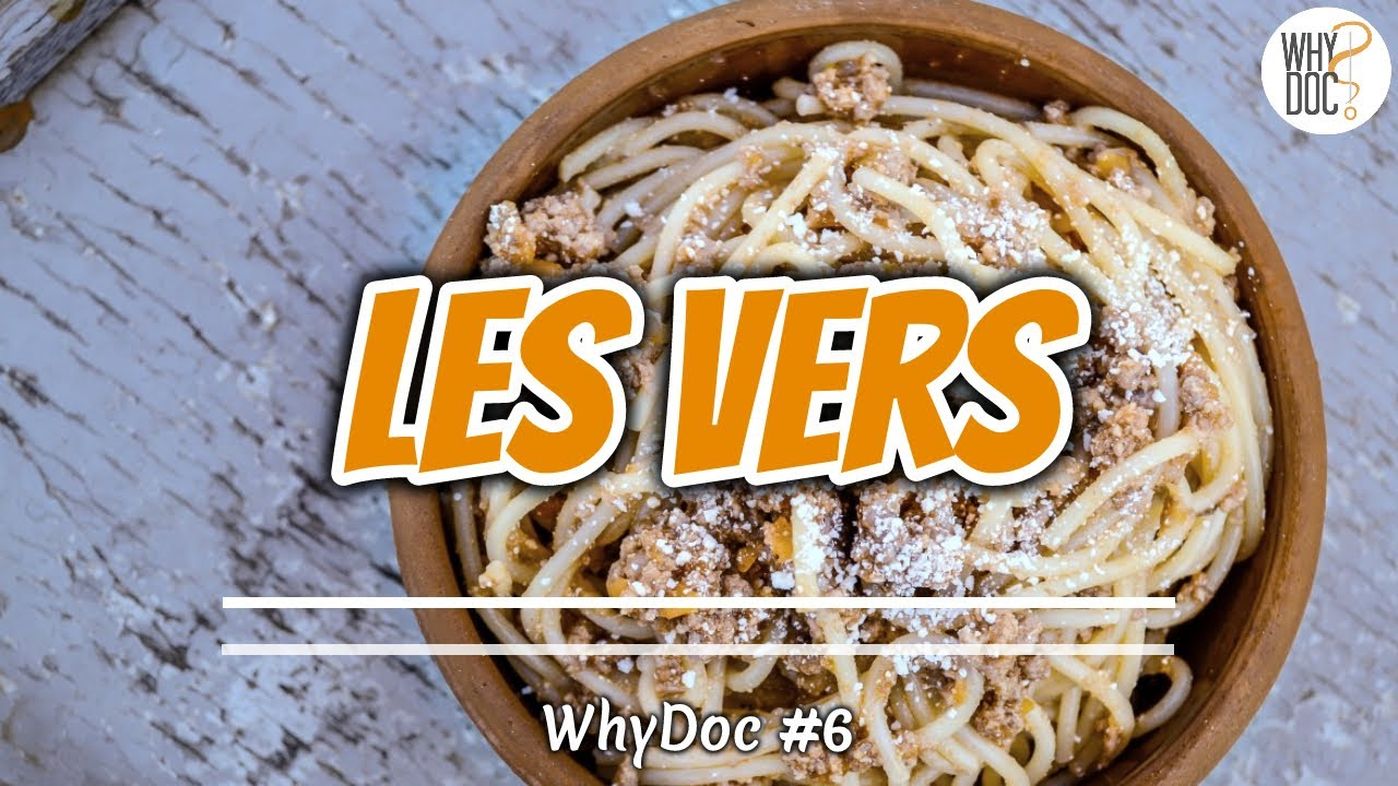 Les Vers Intestinaux Whydoc 6
