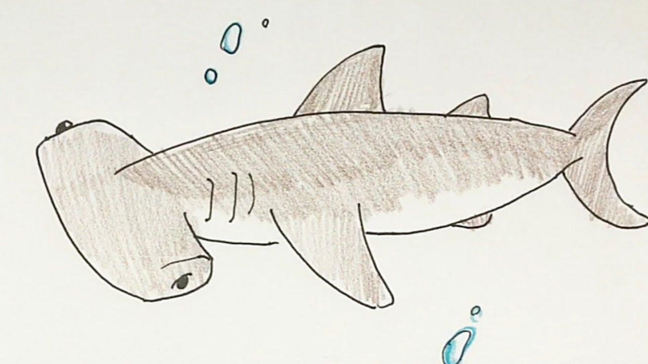 イラスト 簡単 サメ