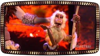 The Lion King – Alles ademt en leeft | Popster! 2015 | Audities | SBS6