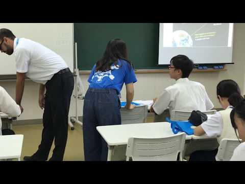 Mathematical Thought: Model lesson In action