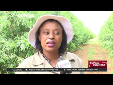 Lesotho plans to diversify its economy through fruit farming