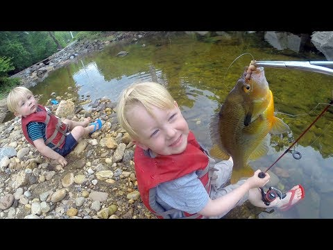 Tiny Creek Fishing ! Small creek fishing with bobber and worms  - Micro fishing for mummichog