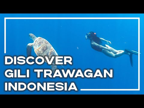 discover-paradise-on-gili-trawangan,-indonesia-🌴-|-stoked-for-travel