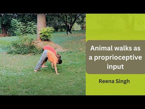 animal-walks-to-calm-kids-and-develop-gross-motor-skills-|-sensory-diet-for-kids-|-reena-singh