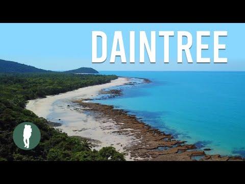 Daintree Rainforest, Tropical North Queensland, Australia