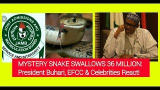 Snake Swallows 36 Million: President Buhari, EFCC & Celebrities React!