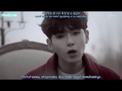 Ryeowook - The Little Prince (Indo Sub)
