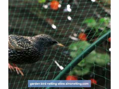 garden bird netting YouTube