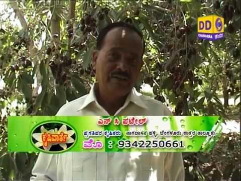 1.30pm.1)Farming tech-Onion2)Burrowing Nematode disease mngt-Banana.