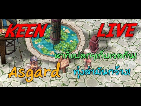 KEEN LIVE Ro Asgard หาที่แปลกๆเวลกัน ทุ่งล่ามันกว้างงงง!