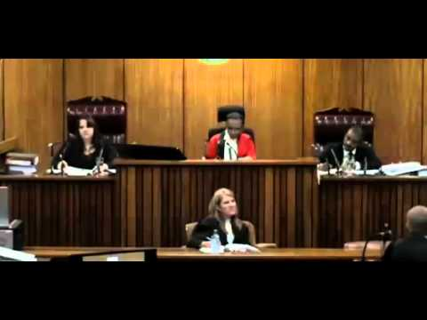 Oscar Pistorius Trial. Day 3. Part 4