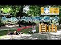ブリュッセル公園を散策!ヨーロッパの公園事情と海外旅行時のすすめ/ 海外旅行☆豆…
