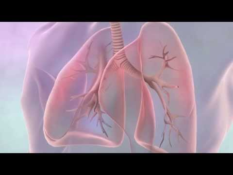 Treatments for lung cancer | Cancer Research UK (2019)