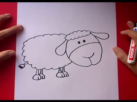 Como dibujar una oveja paso a paso  How to draw a sheep  YouTube