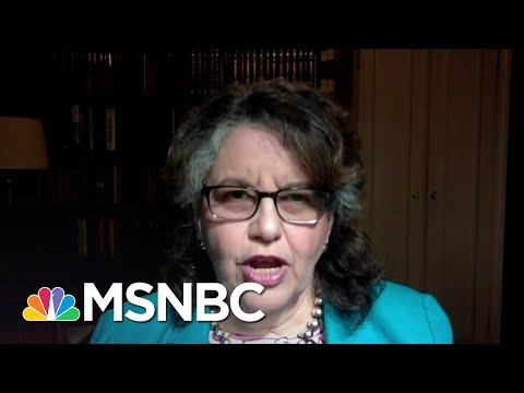 FEC Commissioner: 'There Is No Evidence Of Any Significant Amount Of Voter Fraud' | MSNBC