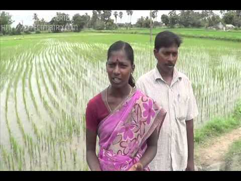 Introduction to Organic Farming - By CAG