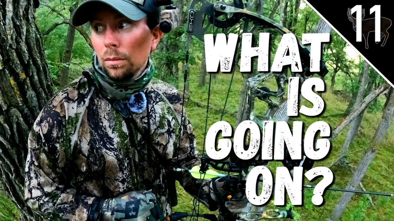 Download 3 Miles Deep on Public Land (A Predator Lurking Nearby?) | Camera Gear We Use to Film Hunts