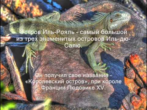 FY/F8FUA FY/F5UOW Остров Иль Рояль Королевский остров