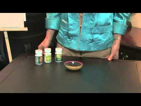 Herbal Remedies for Diabetic Cats