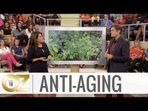 Anti-Aging Foods That Can Prevent Wrinkles and Help Ward Off the Effects of Aging
