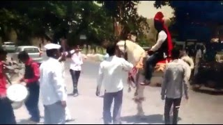 Funny Accident by Horse, Funny People, Funny Indian Wedding Accident Clips, Epic Funny Videos 2016