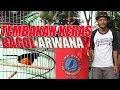 Gila Habis Durasi Full Aksi Tembakan Murai Batu Bagol Arwana Terbaik  Di Sambas Bc Cup  Mp3 - Mp4 Download