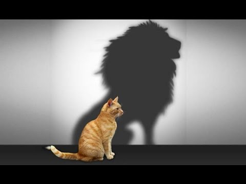 How To Change Your Self Image