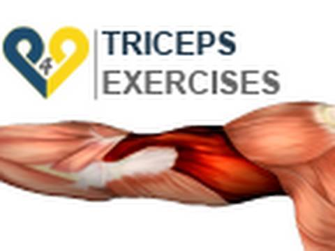 Triceps Exercises : dips 2 benches - YouTube