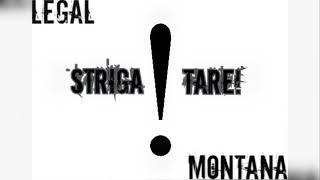 Legal feat. Montana - Striga tare ! ( Oficial Audio )