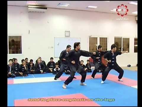 Part 7: Tan Tui #2 - Kuwait Sports Channel Martial Arts Special w/ Sifu Khader Deng
