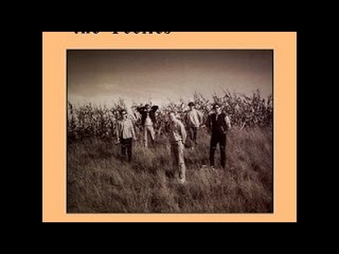 The Feelies - The Good Earth 1986 Full Vinyl