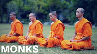 BUDDHIST MONKS! Who Are They and What Do They Do? (Life of a Buddhist Monk Documentary)