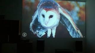 Uhappy U58 PRO led projector nativ 720p