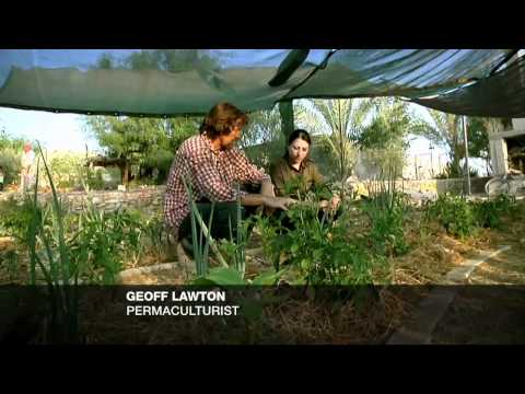 earthrise -Living Roofs in NYC & the Green Isle of Eigg