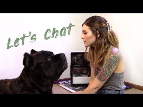 Let's Chat   Vlog
