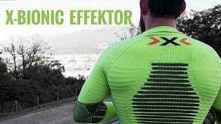 X-BIONIC EFFEKTOR- обзор тайтсов и футболки с длинным рукавом
