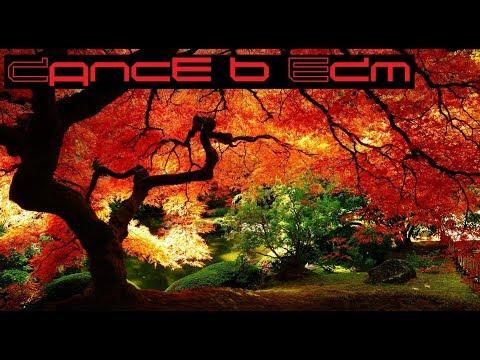 XXXTENTACION & Lil Pump feat. Maluma & Swae Lee - Arms Around You (Audiovista Remix)