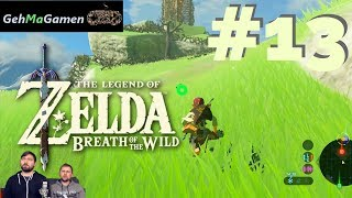 Don Bone & Mc afa daddeln The Legend of Zelda: BotW (Wii U) #13 [Ein Dorn im Auge]
