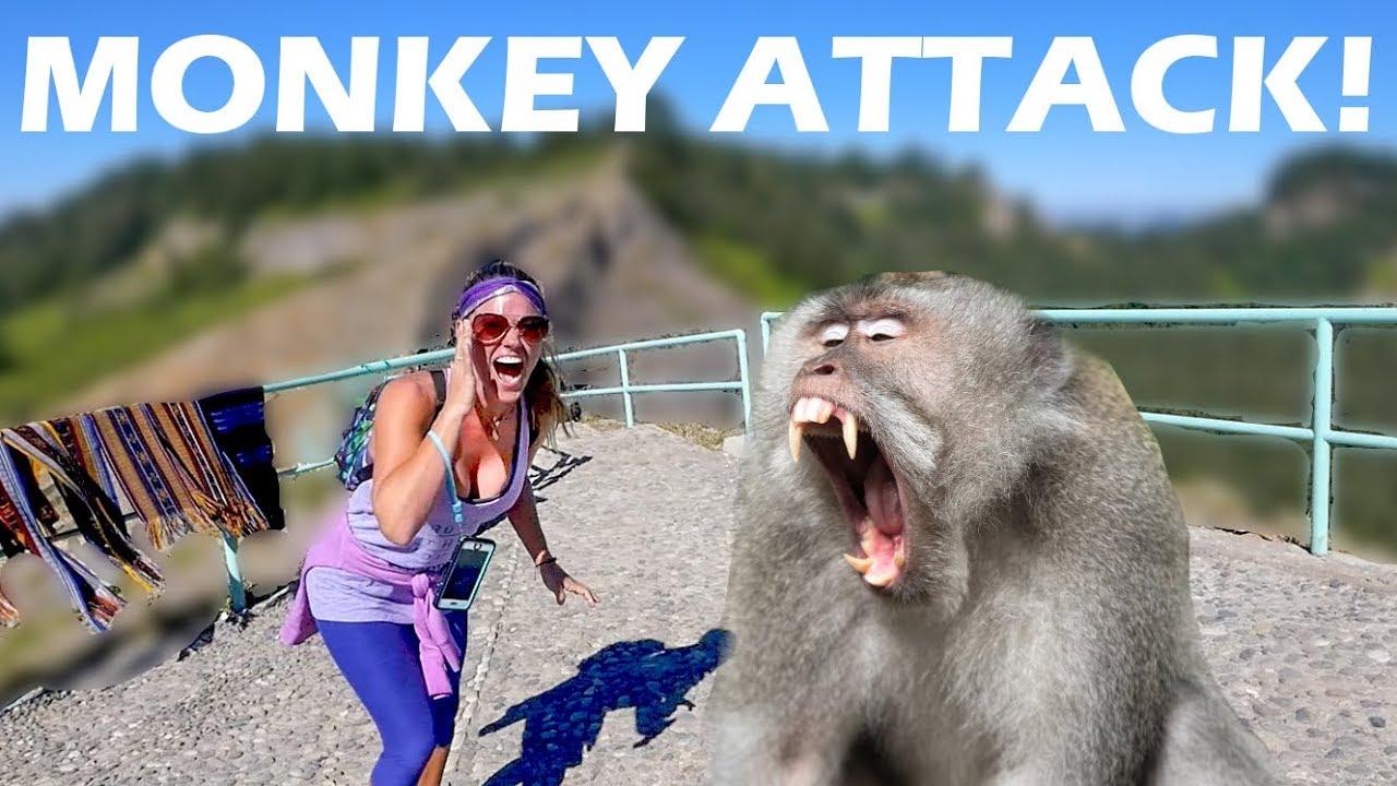 we-get-attacked-by-monkeys-mount-kelimutu-travel-vlog-121