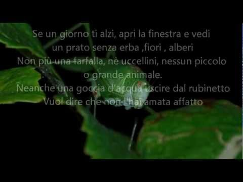 Michael Jackson – Earth Song – Il mondo visto da loro… di Mauro Delai & Margherita Meli