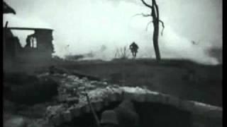 Der 1. Weltkrieg Die Urkatastrophe des 20. Jahrhunderts